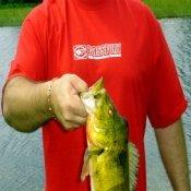 Bass-Fishing-Lake-Powell-Country