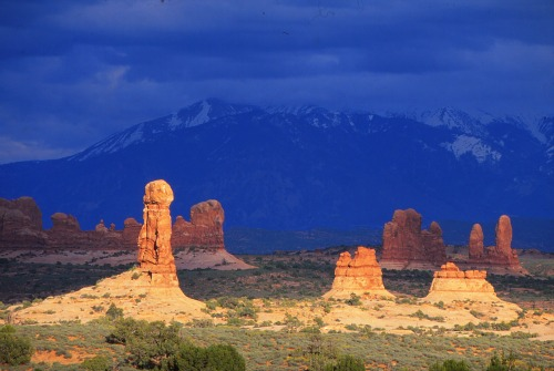 Spires and La Sal Mountains/Arches NP