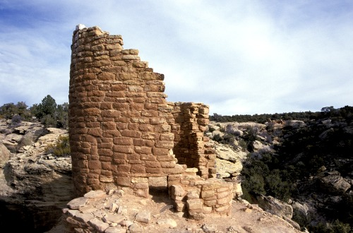 Horse Shoe Ruin - Hovenweep
