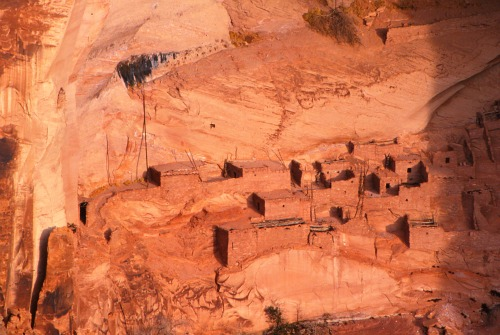 Betatakin Ruins - Navajo National Monument