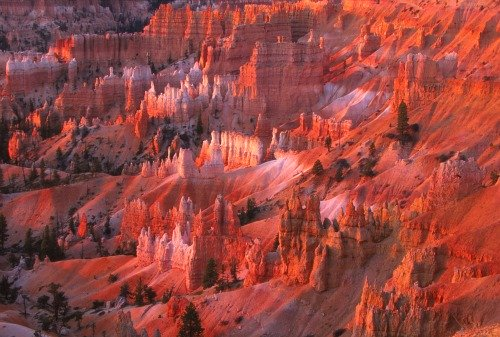 Sunset View Bryce Canyon NP