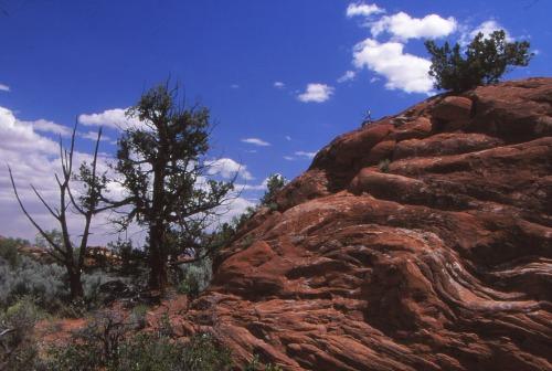 Sandstone Upheaval - Canyonlands NP