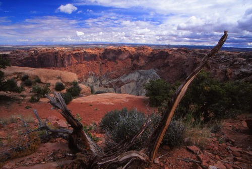 Upheaval Dome - Canyonlands NP