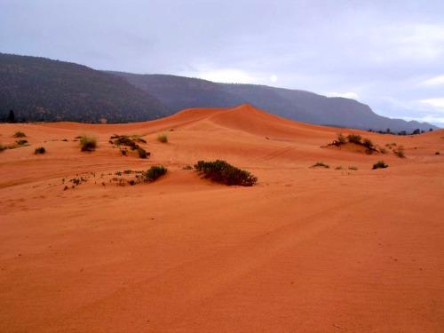 Coaral Pink Sand Dunes